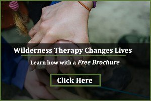 trailsninjapop  Teenage Therapy: Benefits of Choosing Therapy Program for Teens TrailsNinjapop