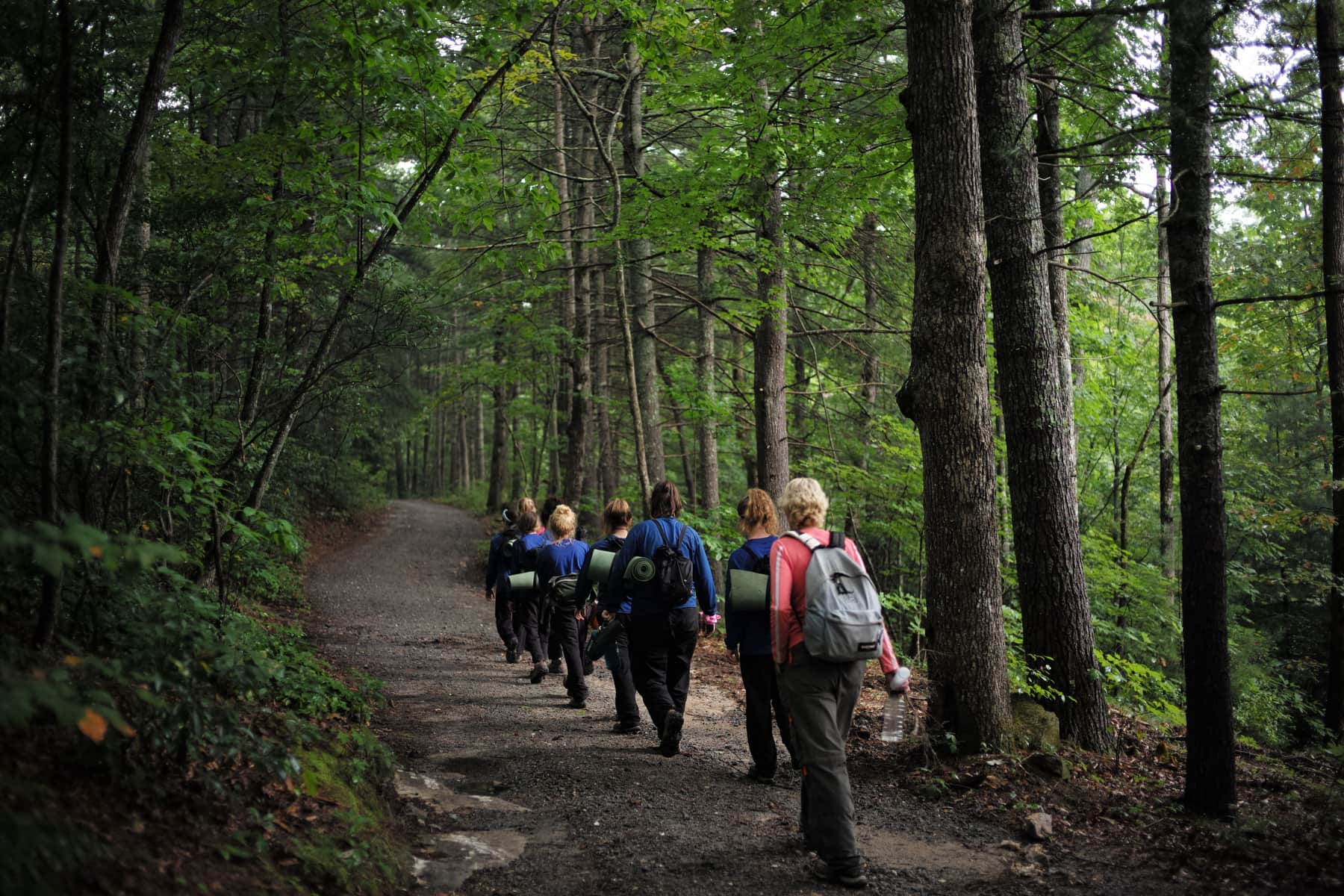 troubled teens programs Outback's wilderness therapy program for troubled teens offers a holistic approach to improving family and personal relationships contact us today.